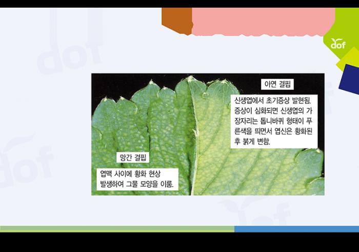 331fc2f649bd164216fc0ee6fa067d9a_1524530731_9771.png